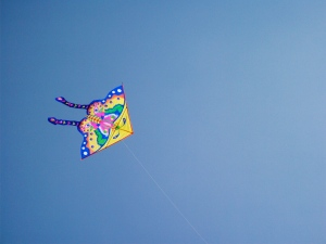 kite flying in flushing